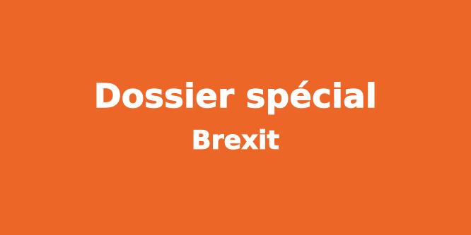 dossier-special-ordonnances-macron-2017